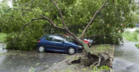 Stormschade auto